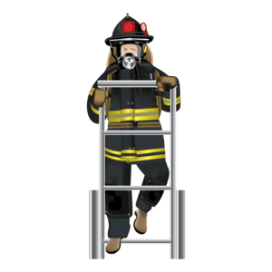 ladder OFAI Preparation & Testing